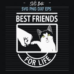 Cat best friends for life
