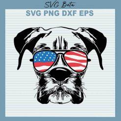 Boxer dog american flag