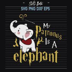 My patronus is a elephant