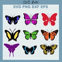 9 Butterfly bundle