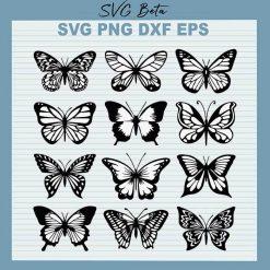 12 butterfly bundle