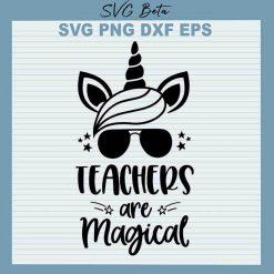 Teacher are magical